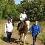 Volunteers are needed for leading horses and